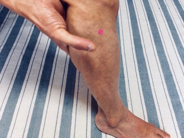 膝下にあるツボ「足の三里」