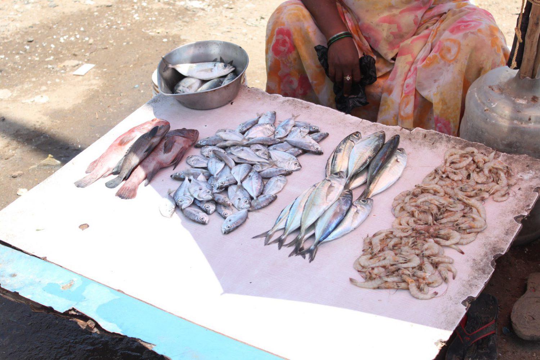 海老や白身魚などを広げた露店の様子