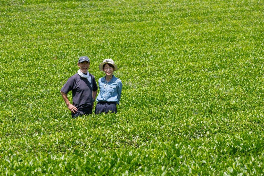 青々とした茶畑に立つ日野社長と次女朱夏さん