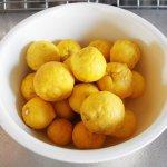 白いボールに入った大小様々な柚子